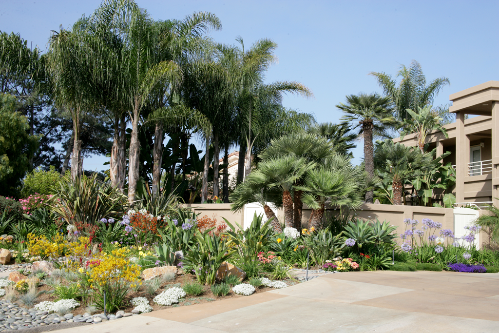 Landscaping landscaping ideas for front yard san diego for Backyard landscaping ideas san diego