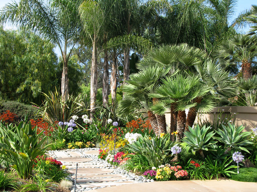 Backyard ideas san diego for Custom landscape design