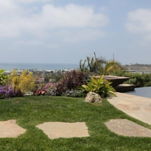 Residential Landscape in Del Mar