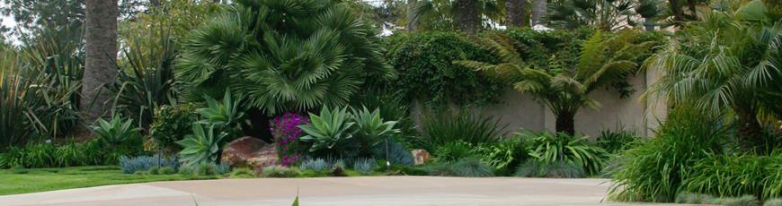 Why C & H Gardens?